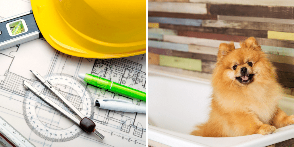 home upgrades for pets