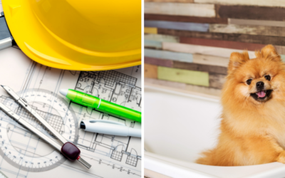 Home Upgrades for Pet Owners